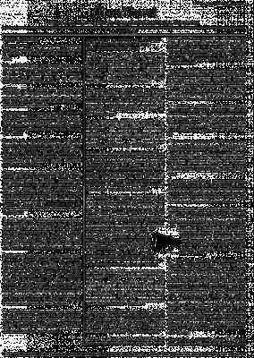 tierranueva1-1-727x1024.png